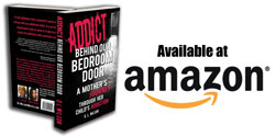 Book Dl Wilson Writes Addict Behind Our Bedroom Door